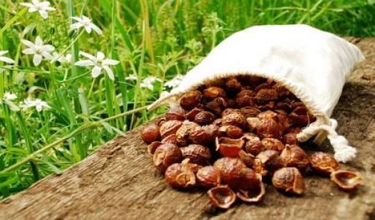 Мыльные орехи 2