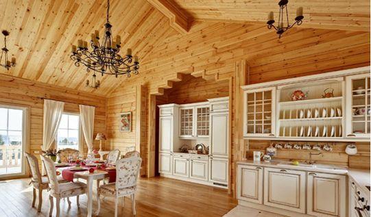 eco house design