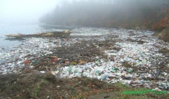 Пластиковые бутылки загрязняют мировой океан