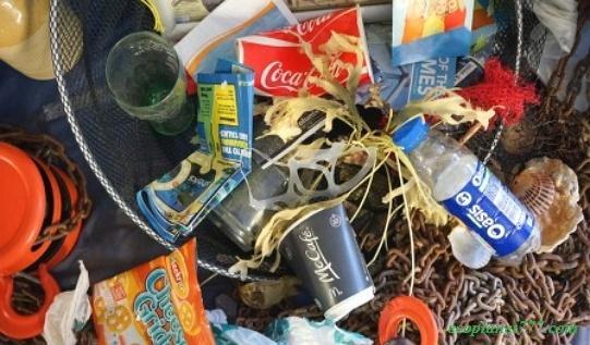 Вред одноразовой пластиковой посуды