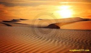 Пустыня Сахара увеличивается