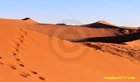 Пустыня Северной Африки увеличилась на 10%