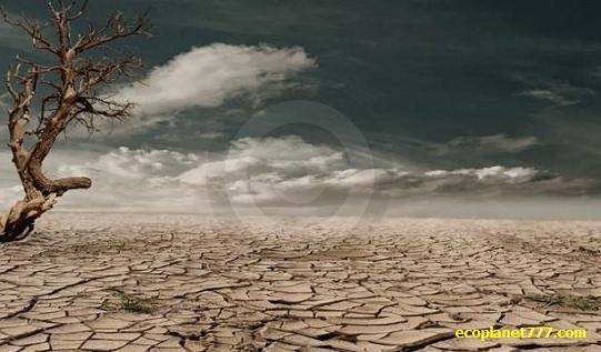 Увеличение Сахары стает катастрофическим