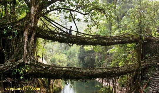 Двохпалубний мост Нонгрит