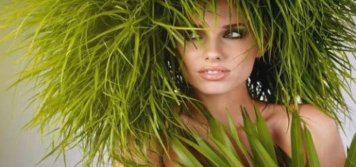 Натуральные шампуни и маски для волос своими руками