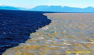 Секрет воды Почему два океана никогда не смешиваются