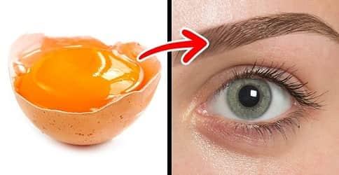 Яичный желток укрепляет ресницы
