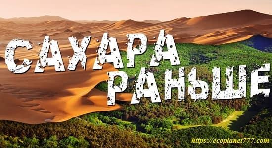 История Сахары